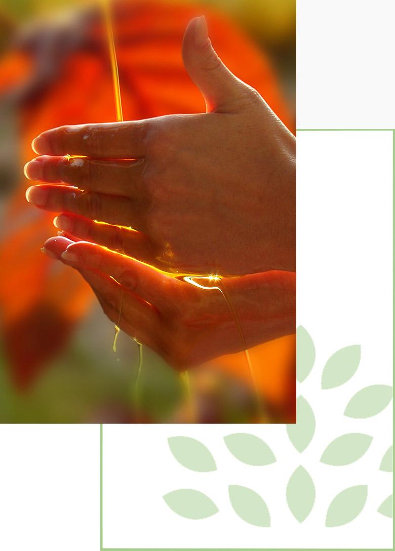 laurencesway-soins-holistique